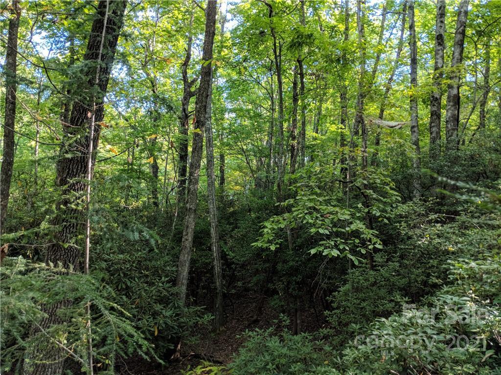 Lot 13 Rolling Ridge Trail