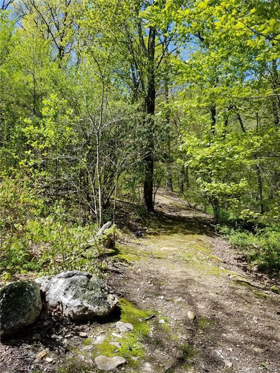 21 Craftsman Overlook Ridge