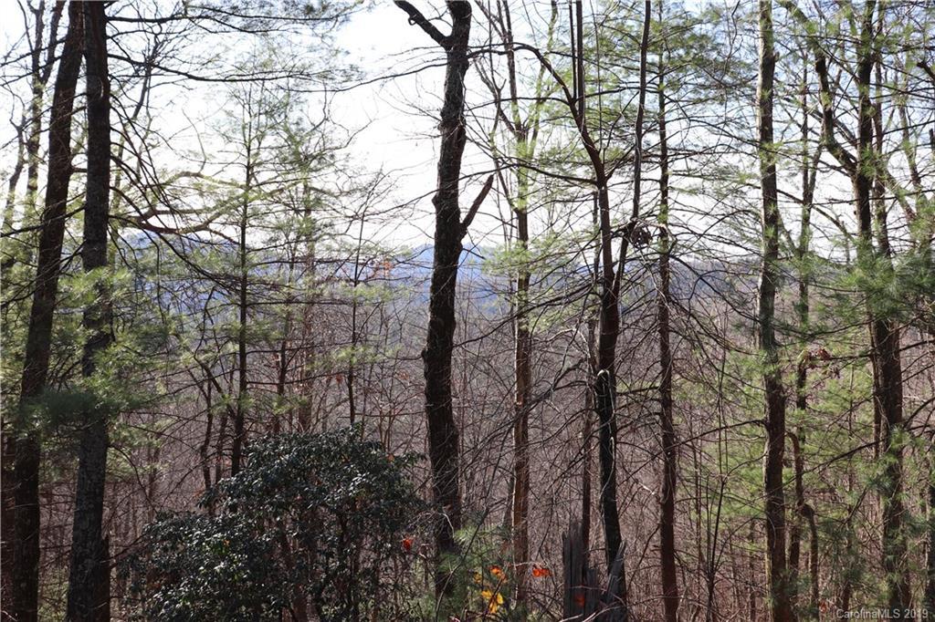 TR 77 Long Ridge Trail