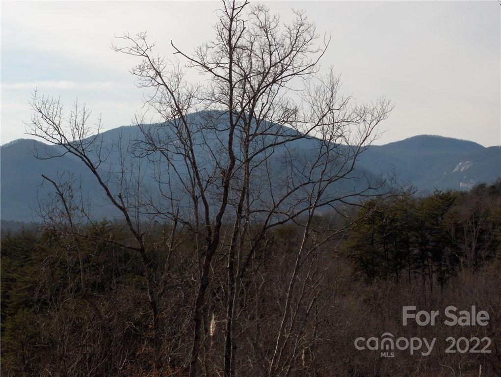 0 Deer Jump Trail