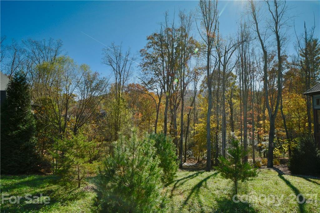 19 Mountain Orchid Way