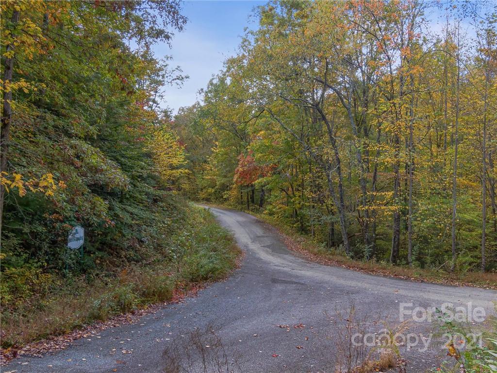 99999 Scottie Mountain Road