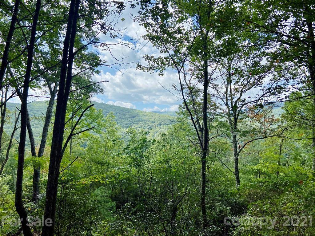 TBD Honey Mountain Road