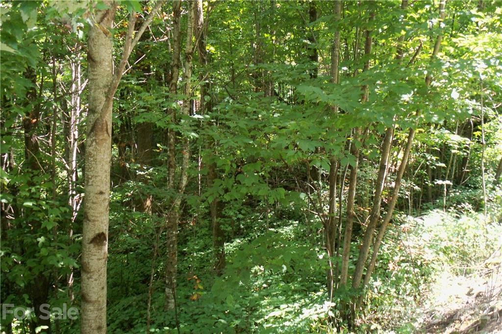Lot 204 Slippery Rock Road