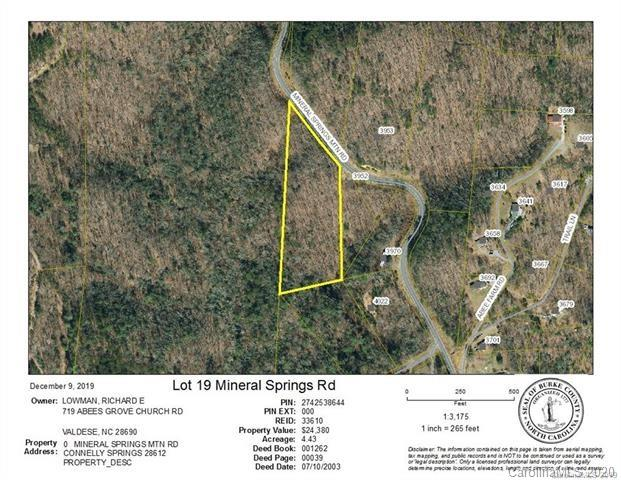 Lots 16 & Lot 19 Mineral Springs Mountain Road