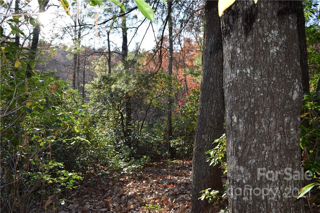 119 Pinnacle Peak Lane