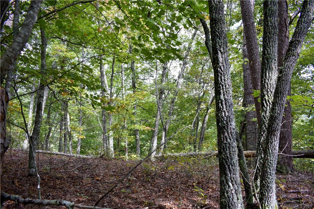 54 Overlook Ridge