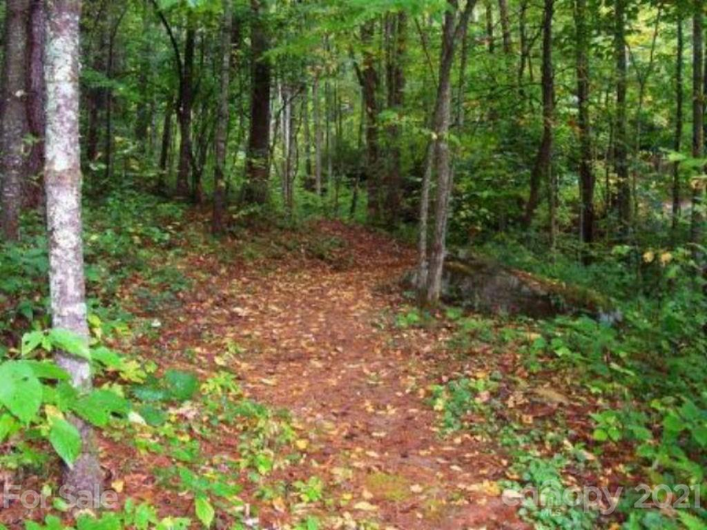 00 Gunstock Trail