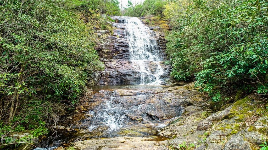 000 Deer Ridge Trail