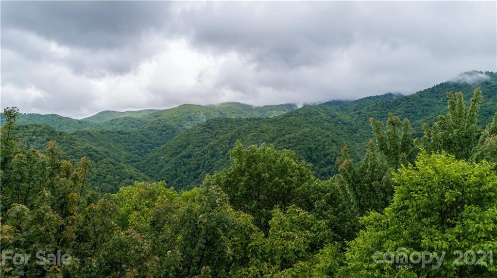 9999 Bear Wallow Ridge Trail