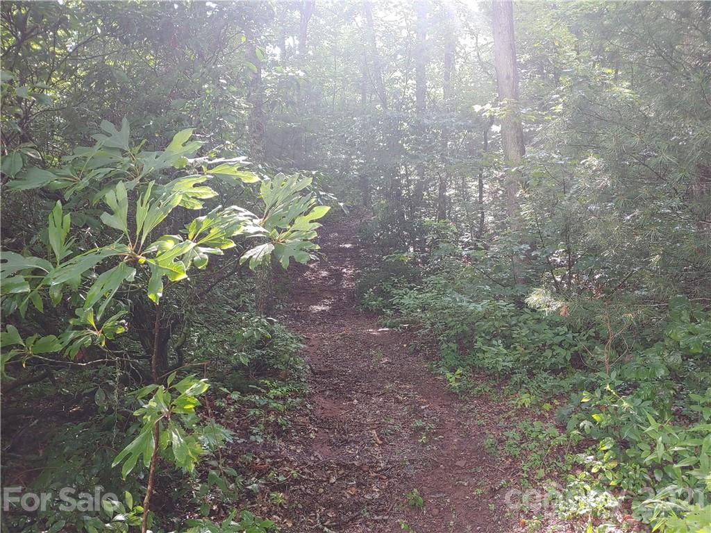3898 Diamond Creek Road