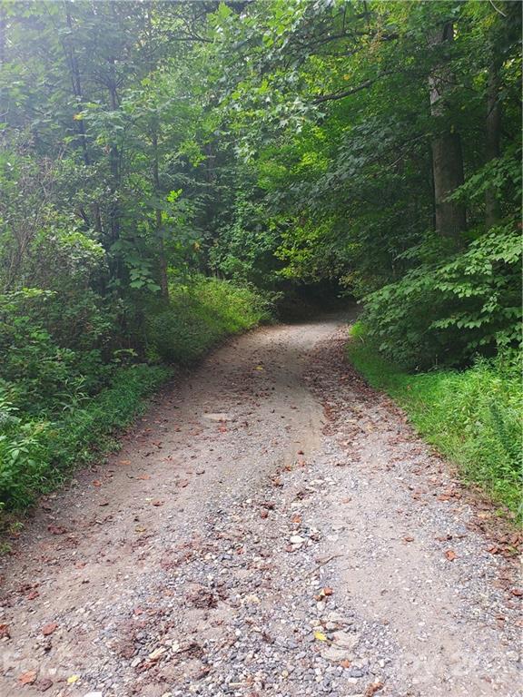 983 Rector Branch Road