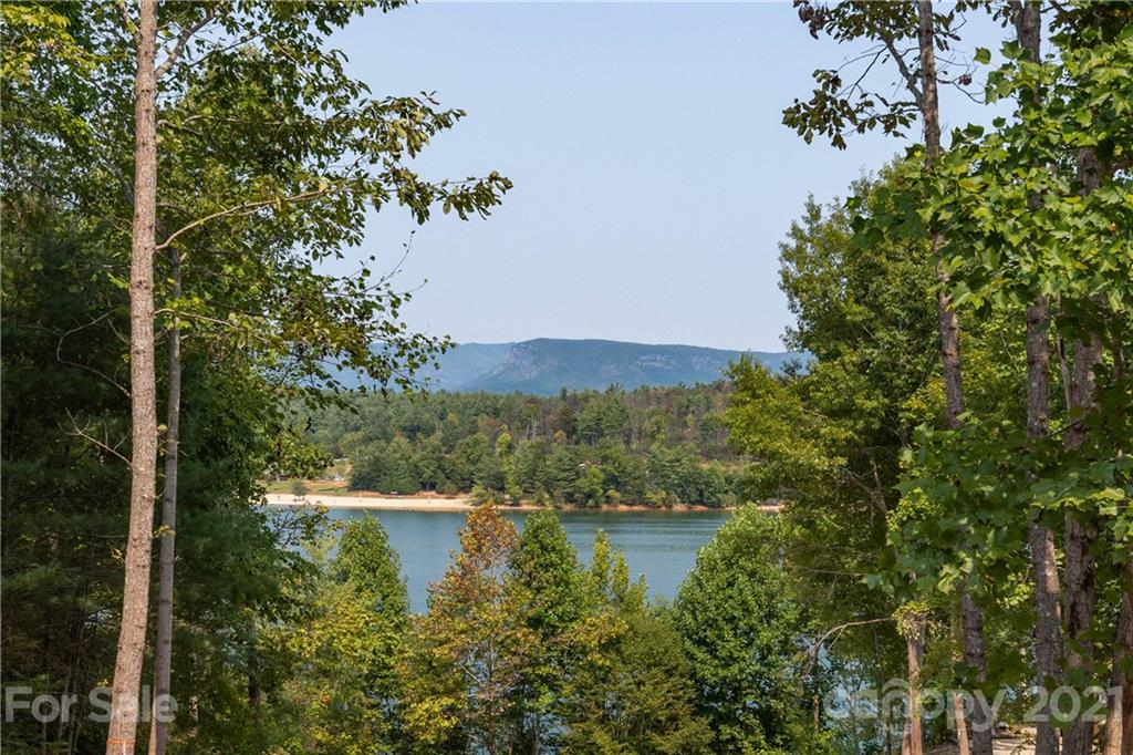 2254 Lake Forest Cove