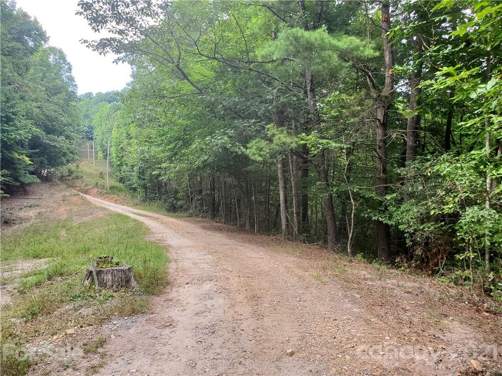 3024 Pearson Mountain Road