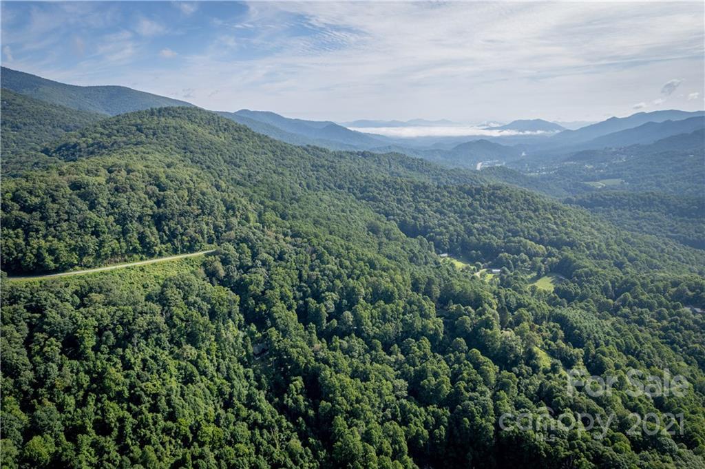 19, 20 Forest Rose Lane