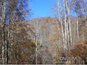 44 Cabin Creek Trail