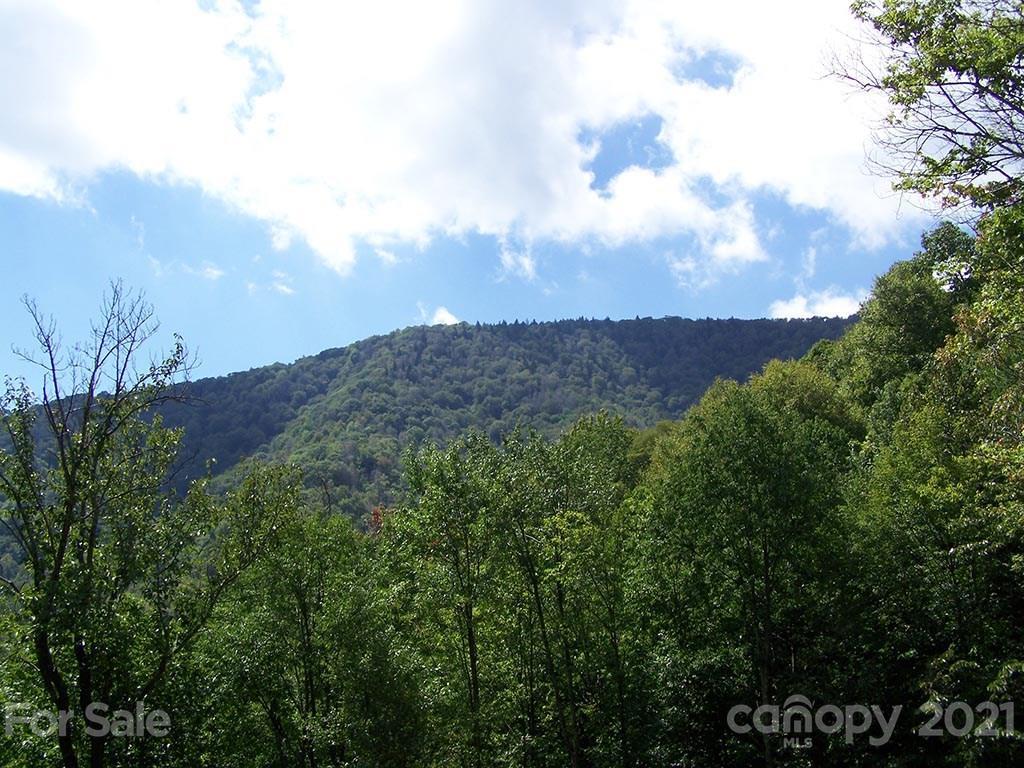 1491 Winding Creek Drive