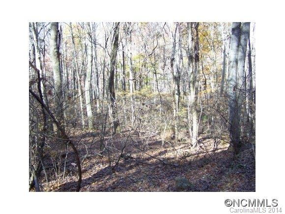Lot 48 Whispering Woods Path