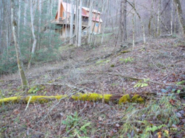 00 Timber Estates
