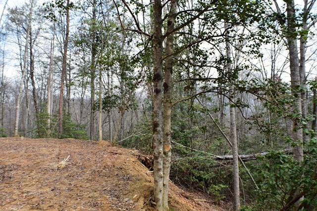 Lot 16 Falcon Ridge