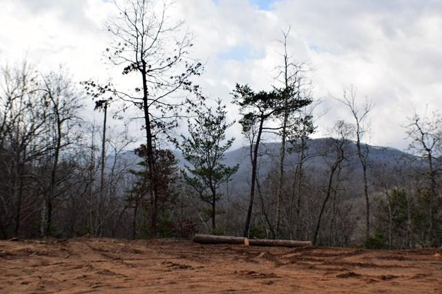 Lot 13 Falcon Ridge