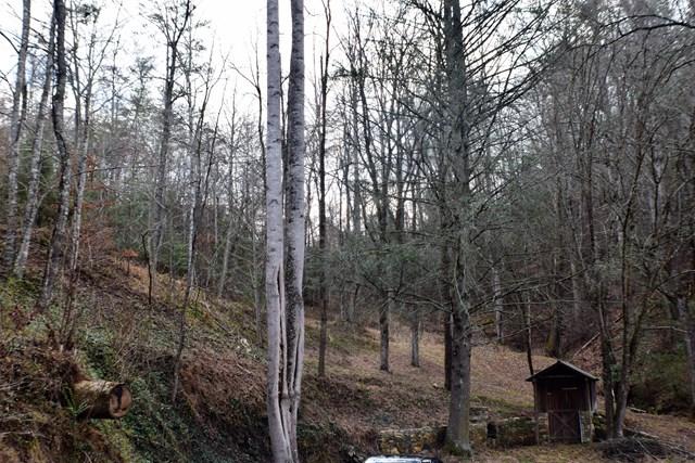 Lot 8 Falcon Ridge