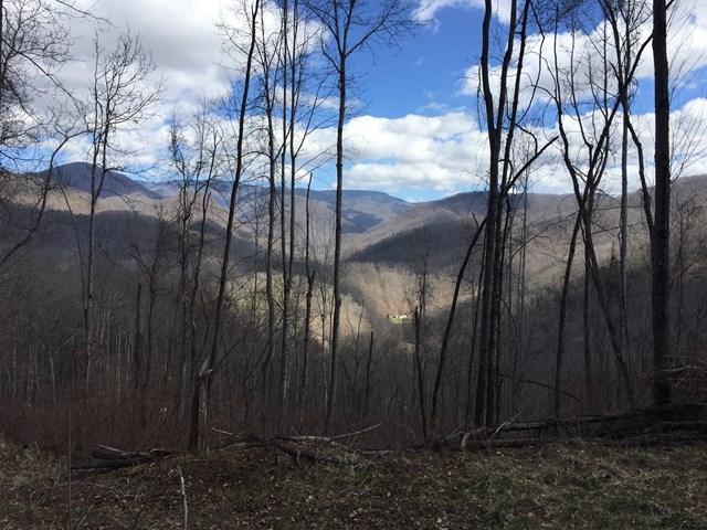 0 Yonaguska Trail