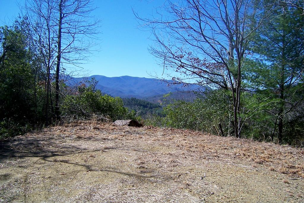 Lot 17 Cliff View