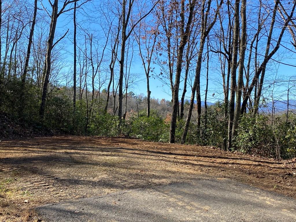 Lot 11 Antler Ridge