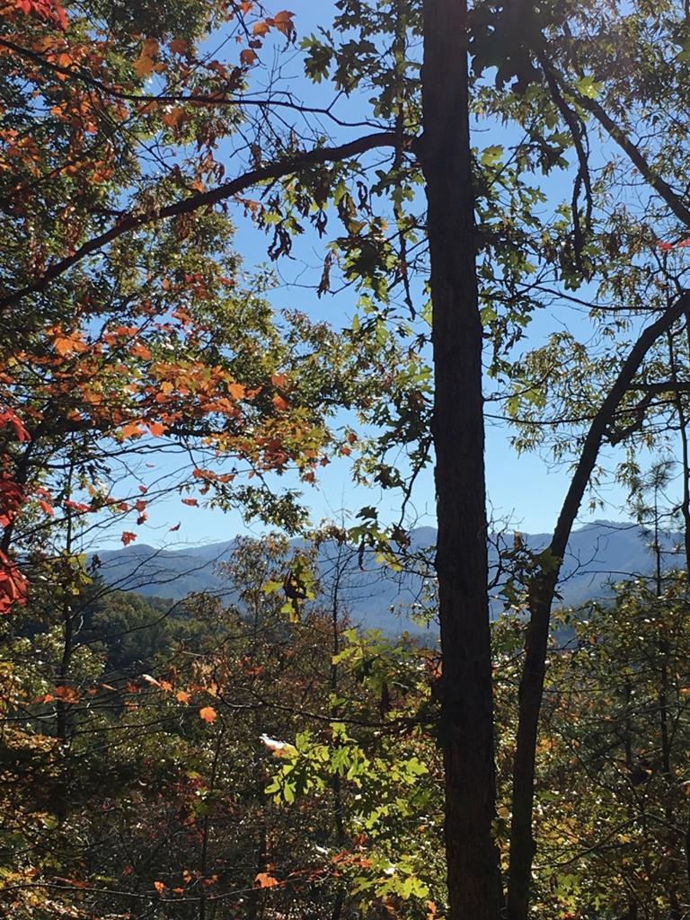 63-3 Cherokee Ridge