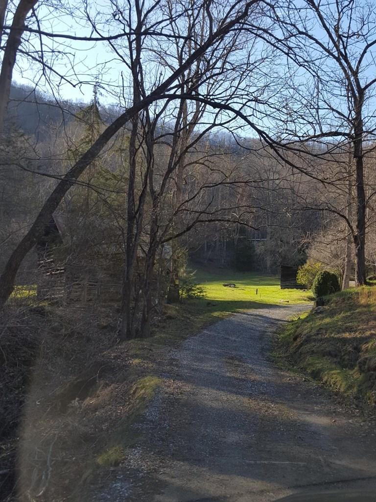 641 Rambling Road