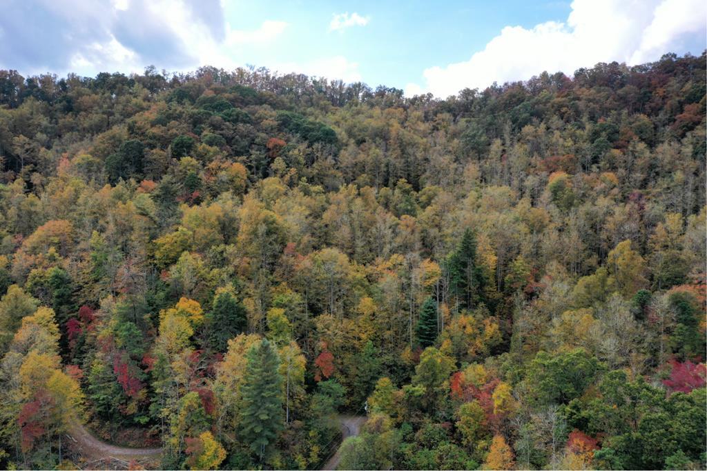VL73 Mtn Forest Estates