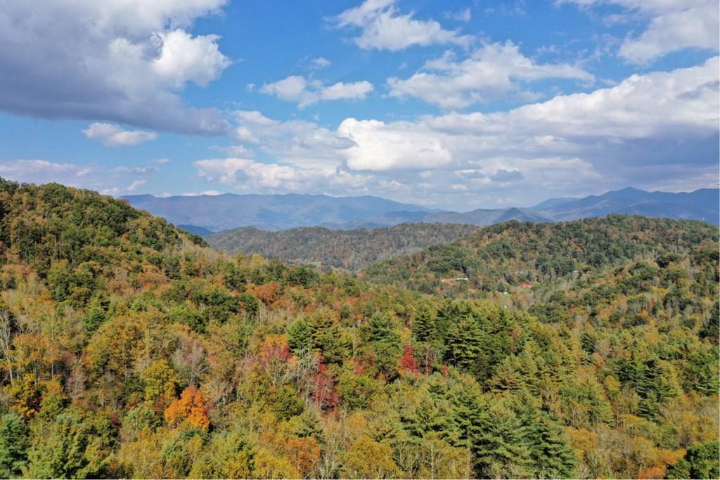 VL74 Mtn Forest Estates