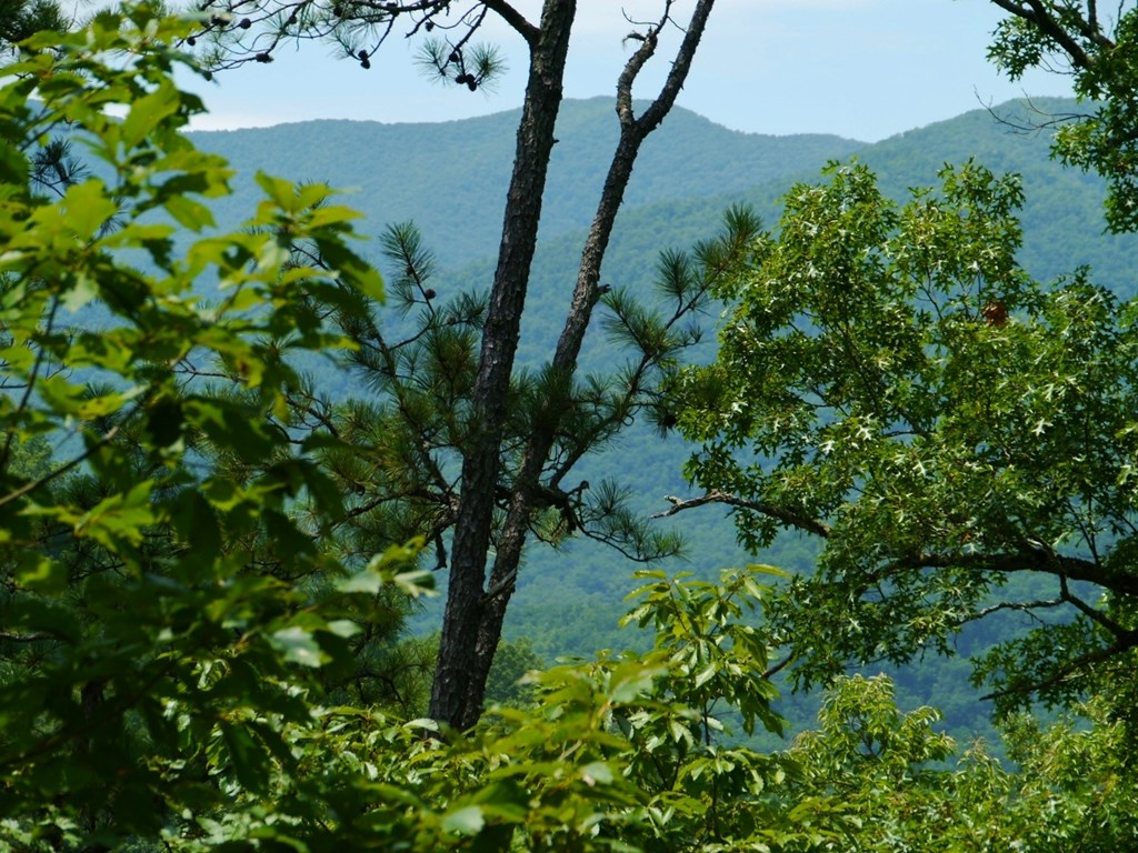 00 Sequoyah View Trail