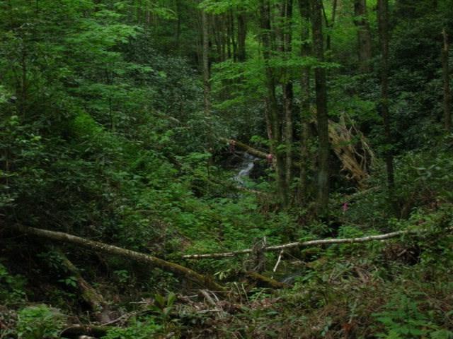 lot 58 Black Rock Creek