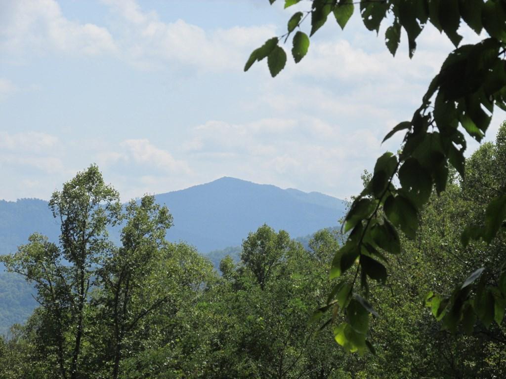 00 Gobbler Ridge