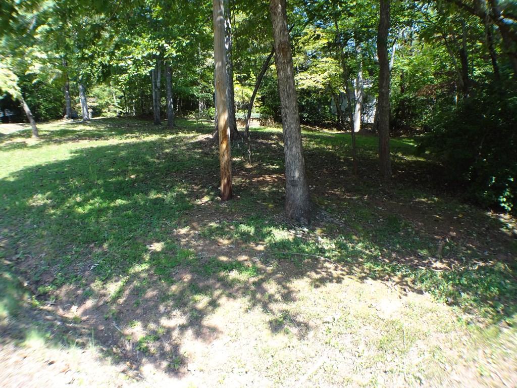 0 Chestnut Ridge