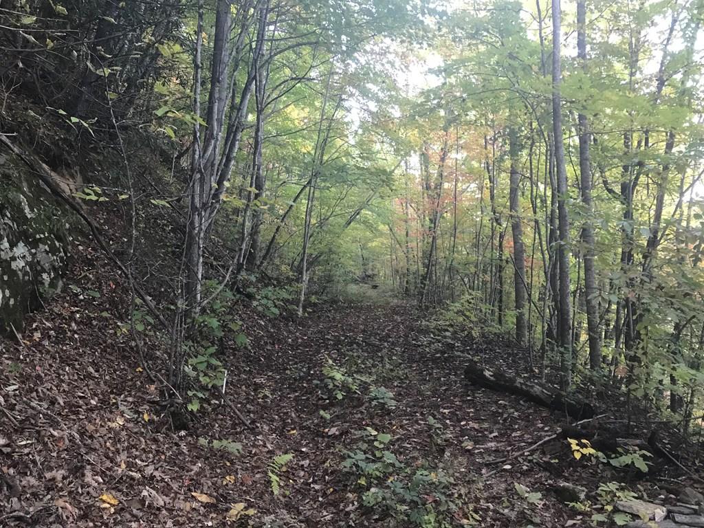 00 Lot 2, Sec 1 Indian Trail Development