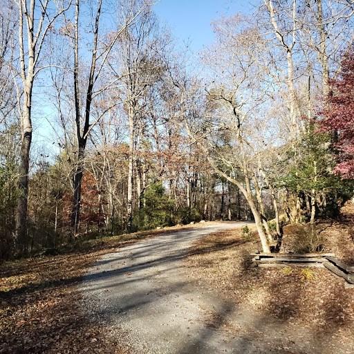 272 Honey Locust Trail