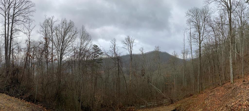 0 LT 44 Eagles Ridge