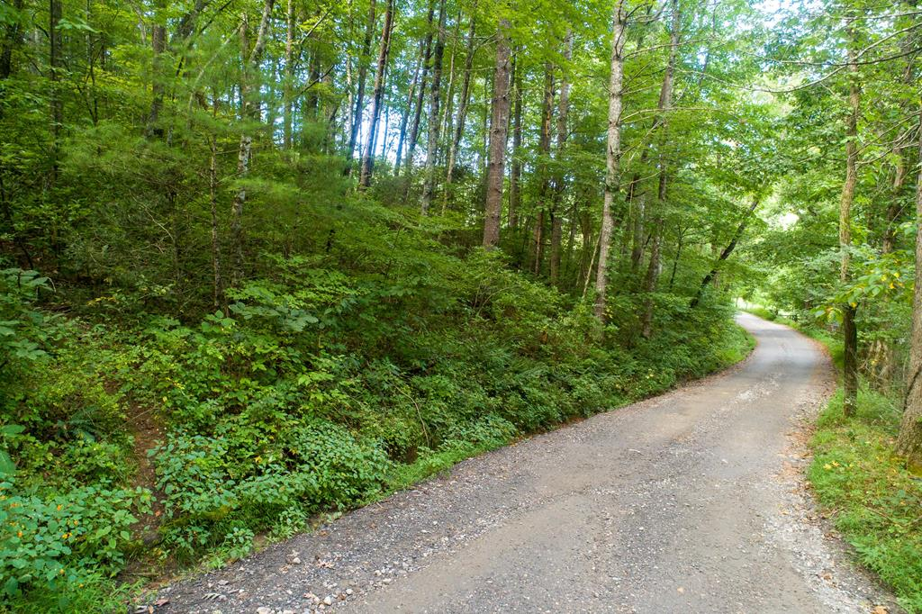 Lot 1 Cedar Creek Farm Rd,