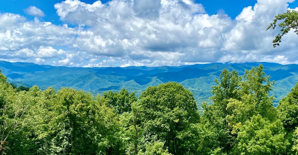 38A Mountain Dr