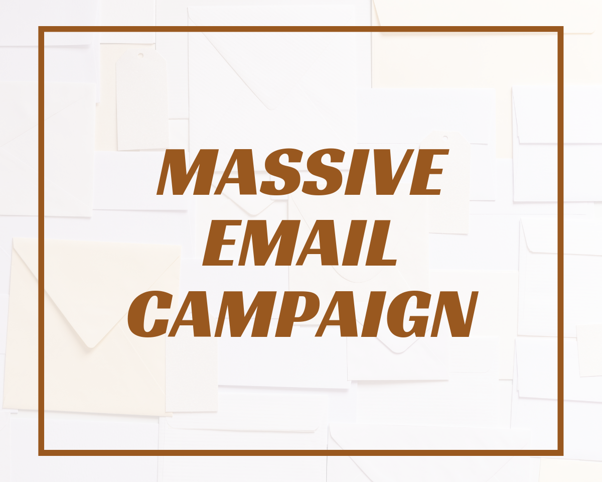 Influencer Email Campaign