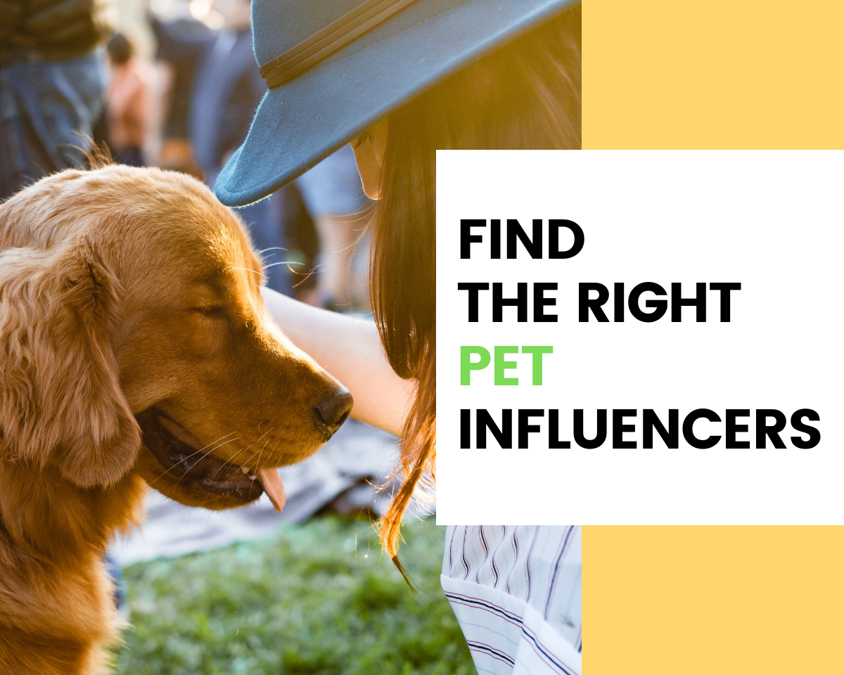 Find Pet Influencers