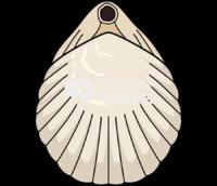Brachiopod 1 back
