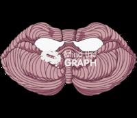 Cerebellus 2