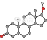 Dihydrotestosterone