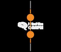 Disulfide molecule 2