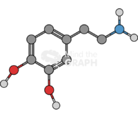 Dopamine molecule