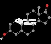 Estrone molecule
